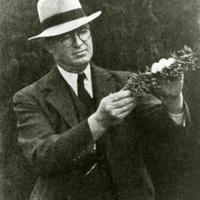 Harry Shepherd Portrait