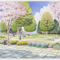 Design Concept Watercolors