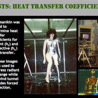 Center for the Built Environment :Thermal manikin <br />