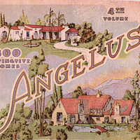 Angelus: 300 distinctive homes
